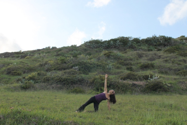 supported side plank,a variation build foundation, yogini tiff yoga, diana melo photography
