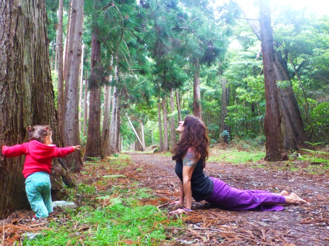 Upward Facing Dog, Healing with the Trees