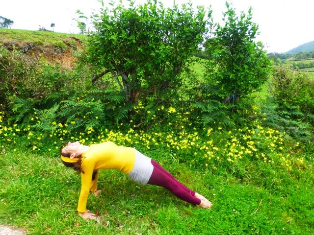 yoga poses for chakra